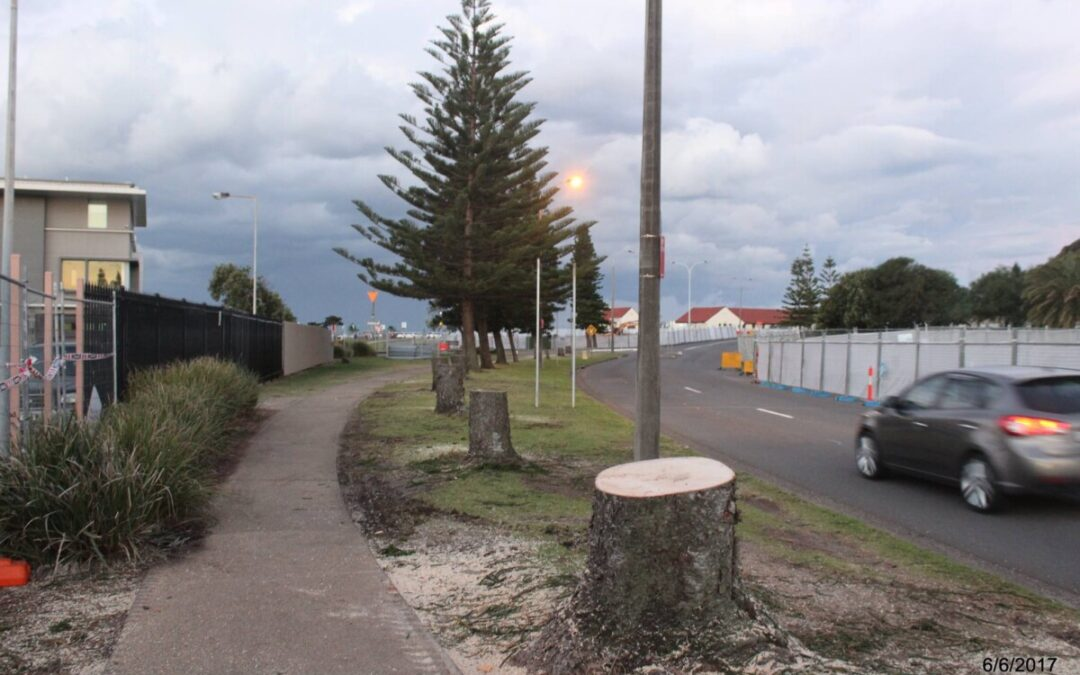 Foreshore Shady Deal Exposed
